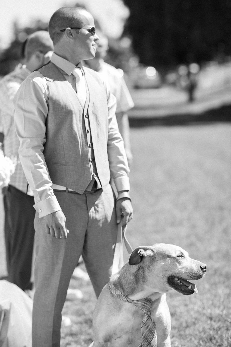 kelowna dog wedding